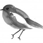 birdrdarker